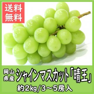 ◆送料無料◆岡山県産シャインマスカット「晴王」 赤秀品 露地物 約2kg/3〜5房入(房数指定不可)