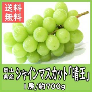 ◆送料無料◆岡山県産シャインマスカット「晴王」 秀品 露地物 1房/約700g