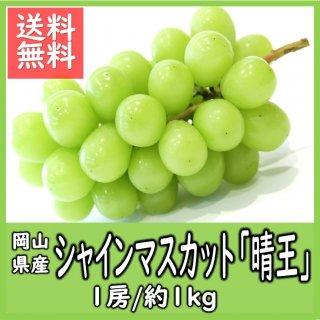 ◆送料無料◆岡山県産シャインマスカット「晴王」 秀品 露地物 1房/約1kg