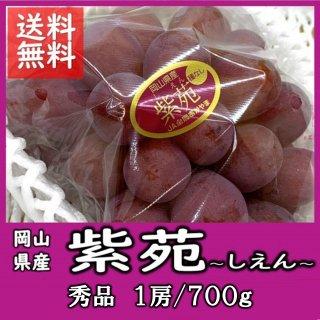 ◆送料無料◆岡山の冬葡萄「紫苑(しえん)」  赤秀 1房/700g