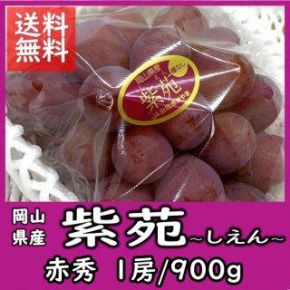 ◆送料無料◆岡山の冬葡萄「紫苑(しえん)」  赤秀 1房/900g