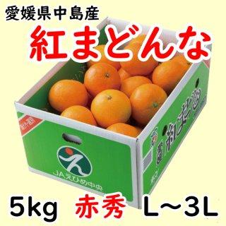 【贈答用】愛媛県オリジナル柑橘「紅まどんな」 赤秀 約5�(L〜3L)  ◆予約商品◆