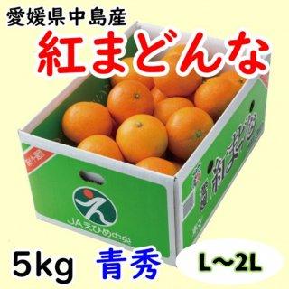 愛媛県オリジナル柑橘「紅まどんな」 青秀 約5�(L〜3L)  ◆予約商品◆