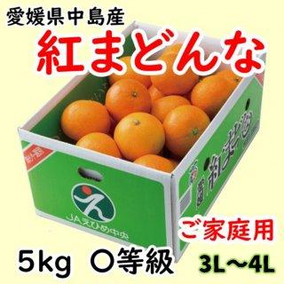 【ご家庭用】愛媛県オリジナル柑橘「紅まどんな」 〇等級 約5�(L〜3L)  ◆予約商品◆