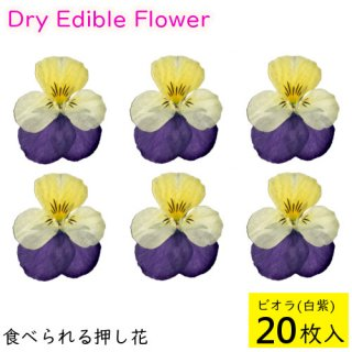 (全国送料無料)食べられる押し花 ドライエディブルフラワー  ビオラ(白紫) 20枚入り 食用花 ドライフラワー  メール便(omtmb6256)