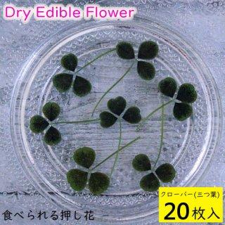 (全国送料無料)食べられる押し花 ドライエディブルフラワー  クローバー(三つ葉) 20枚入り 食用花 ドライフラワー  メール便(omtmb6260)