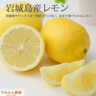 瀬戸内レモン 秀品 10kg  ハウス栽培 防腐剤ワックスなし 贈答 フルーツギフト