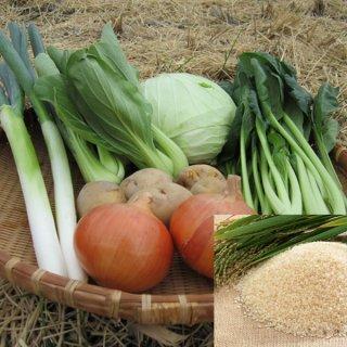 野菜セット 6種類 お米 愛媛県産