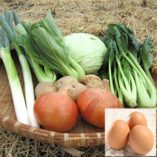 野菜セット 6種類 たまご赤玉10個 愛媛県産