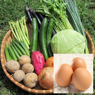 野菜セット 10種類 たまご赤玉10個 マルシェ愛媛