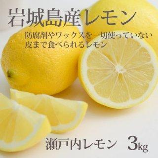 レモン 整品 3kg  ハウス栽培 防腐剤ワックスなし 瀬戸内産