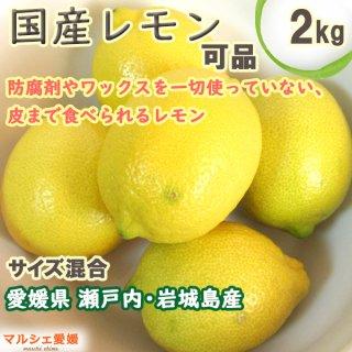 レモン 可品2kg 果汁たっぷり 家庭用 国産 岩城島 産地直送 一部地域送料無料