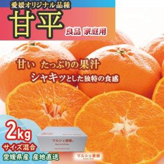 甘平 2kg サイズ混合 かんぺい 愛媛 みかん 産地直送 一部地域送料無料
