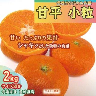 甘平 小粒 2kg サイズ混合 愛媛 みかん かんぺい 産地直送 一部地域送料無料