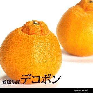 デコポン ジュース用 混合 5kg 愛媛 三崎 産地直送