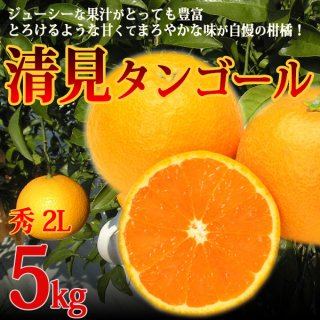 清見タンゴール 秀品 2L 5kg 特選品 三崎 清見オレンジ 贈答 一部地域送料無料