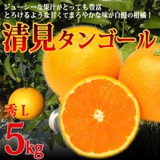 清見タンゴール 秀 L 5kg 特選品 樹上越冬栽培 三崎の完熟 清見オレンジ ギフト 贈答