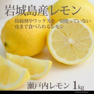 レモン 整品 1kg  皮ごとたべられる果汁たっぷりレモン 愛媛県産