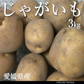 じゃがいも 3kg 混合 ジャガイモ 家庭用 愛媛 地域限定送料無料