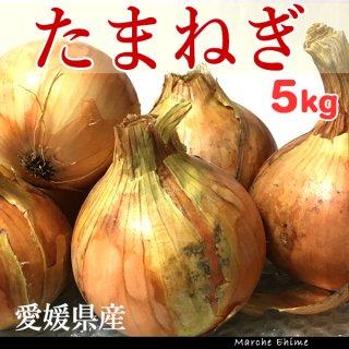 たまねぎ 5kg 混合 ご家庭用 タマネギ 玉ねぎ 愛媛 地域限定送料無料