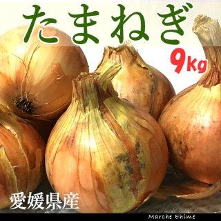たまねぎ 9kg 混合 ご家庭用 タマネギ 玉ねぎ 愛媛 地域限定送料無料
