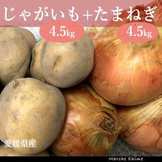 じゃがいも 4.5kg たまねぎ 4.5kg 混合 愛媛 地域限定送料無料