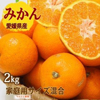 みかん 3kg サイズ混合 可品 愛媛 一部地域送料無料