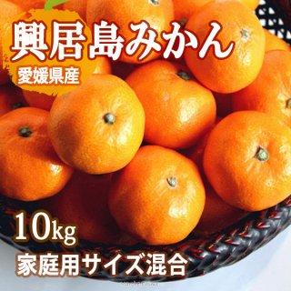 興居島 みかん 10kg サイズ混合 家庭用 温州みかん ごごしま 興居島 愛媛 一部地域送料無料