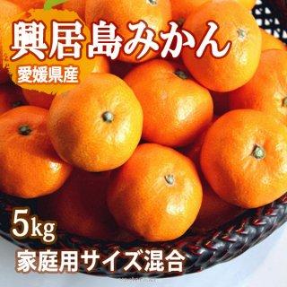 興居島 みかん 5kg サイズ混合 家庭用 温州みかん ごごしま 興居島 愛媛 一部地域送料無料
