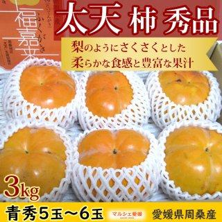 太天柿 秀品 3kg 青秀 愛媛県周桑産 たいてん 福嘉来 ふくがき 一部地域送料無料