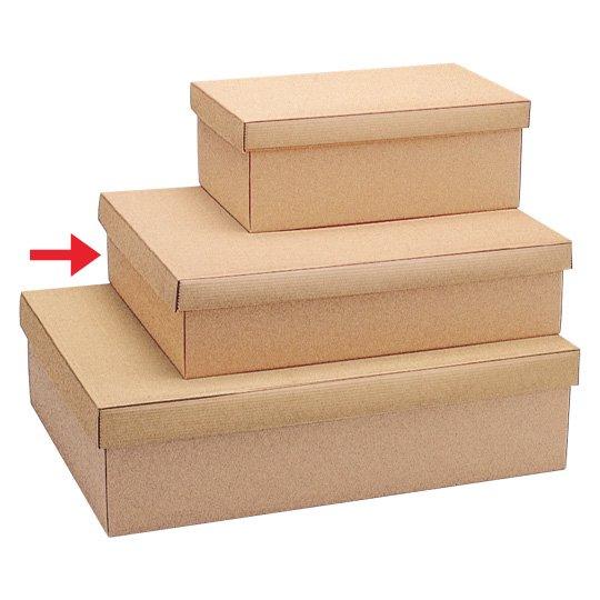 【ボックス】NEWハピルBOX 2