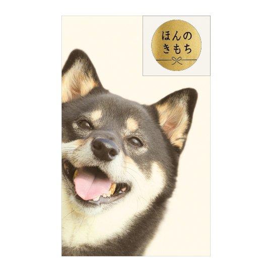 ポチ袋S ひょっこり黒柴犬
