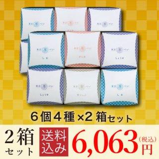 【送料込み】<br>東京専べいニジュウマル6個(4種)×2箱セット