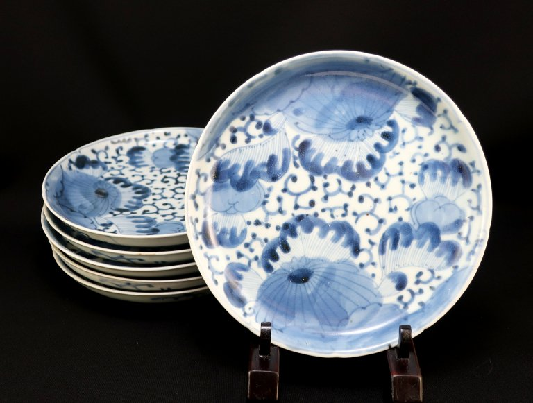 伊万里染付菊花文六寸皿 六枚組 / Imari Blue & White Plates with the picture of Chrysanthemum flowers  set of 6