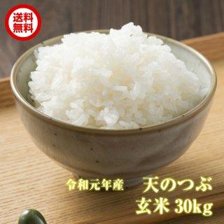 【送料無料】 新米 天のつぶ 玄米 30kg 福島県産 令和元年産