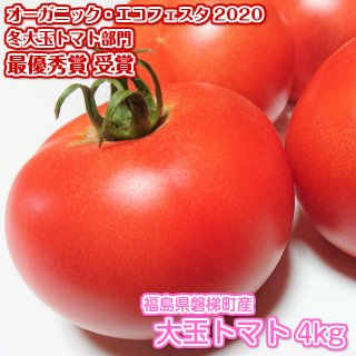夢農園さとうの最優秀賞受賞「大玉トマト」 4kg(福島県磐梯町産)(夢農園 さとう)