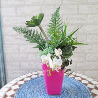 光触媒アートフラワーアレンジメント【ルフト】癒しのグリーンと幸せの胡蝶蘭