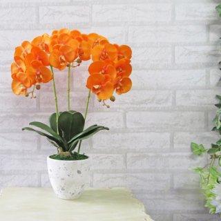 光触媒アートフラワーアレンジメント【ミディ胡蝶蘭3本立て・オレンジ】少しコンパクトなサイズの胡蝶蘭です。