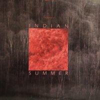 Friedemann - Indian Summer