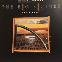 Michael Shrieve / David Beal - The Big Picture