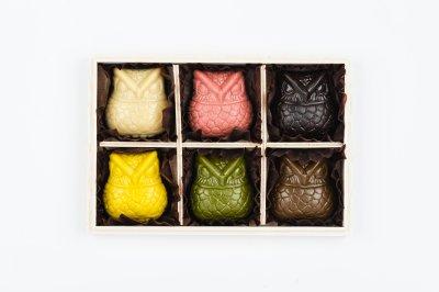 <バレンタイン限定>:HAPPY OWL CHOCOLATE GIFT BOX SET (6per ):梟 ローチョコレート 6個入ギフトセット(木箱入り)
