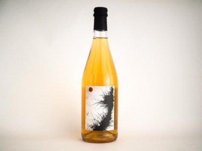 完売しました!NATURAL WINE 「Falestar Pignoleto 2019 (白)」 x OJAS  <ナチュラルワインとローチョコレートのセット2>