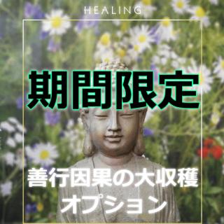 善行因果の大収穫!【限定販売】スピリチュアルヒーリングのオプション