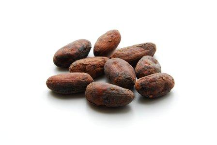 カカオ生豆(Cocoa Beans)200g