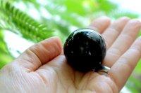 シャングリラ産天然モリオン(黒水晶)スフィア 34mm