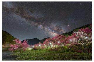 天の川の星景写真プリント(花桃 A4サイズ安価版)