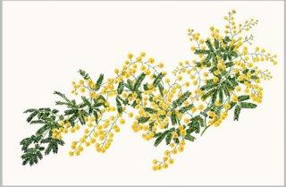 版画 「ミモザの花」