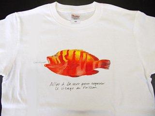 Tシャツ(アカミーバイ)