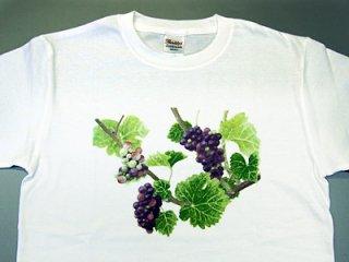 Tシャツ(三房のピノ)