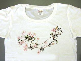 Tシャツ (モンタナ)